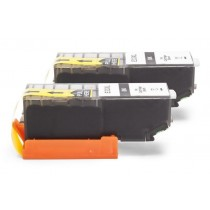 Alternativ zu Epson C13T33514010 / C13T33514012 / 33 XL Tinte Black Doppelpack